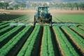 Pestycydy a środowisko